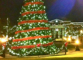 origen árbol de navidad